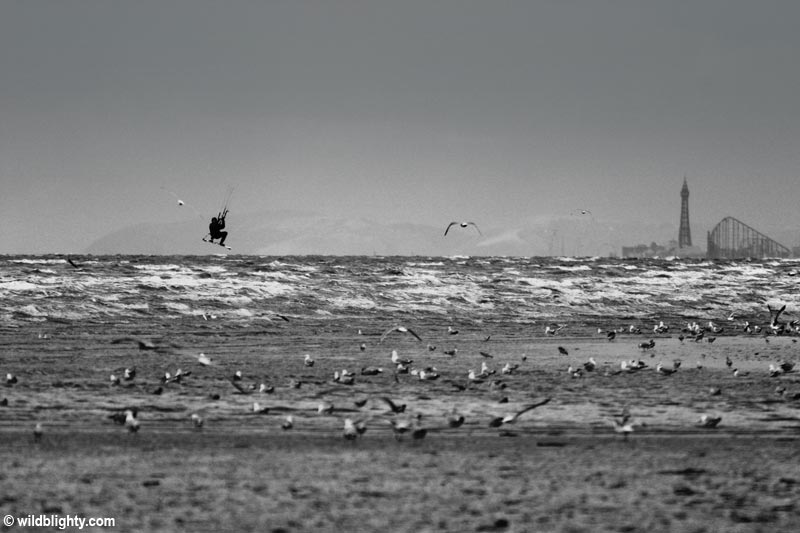 Kitesurfer at Ainsdale Beach with the famous Blackpool Big One Rollercoaster on the horizon