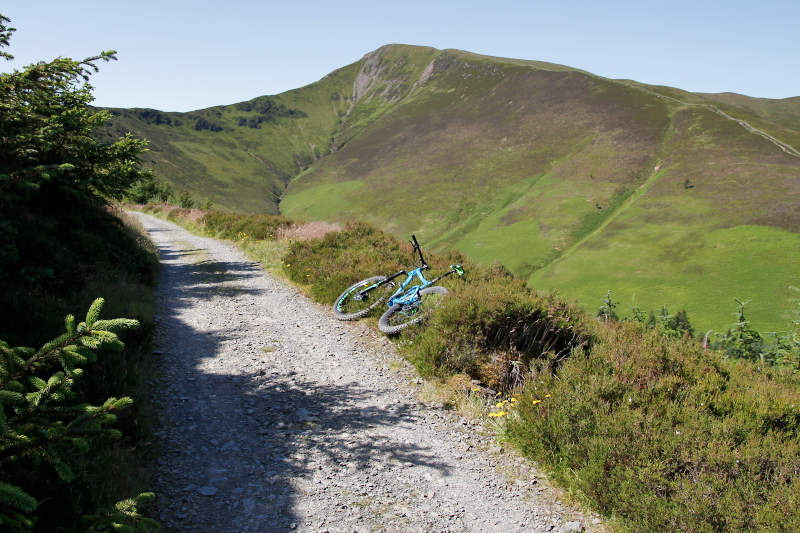 View of Grizedale Pike and MTB trail