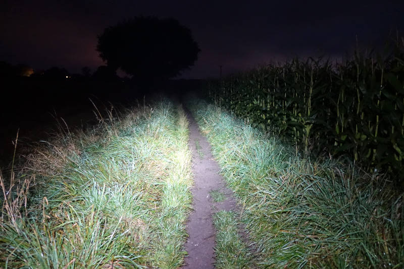 A farm trail lit up by the Silva Trail Runner 4 on Medium mode.